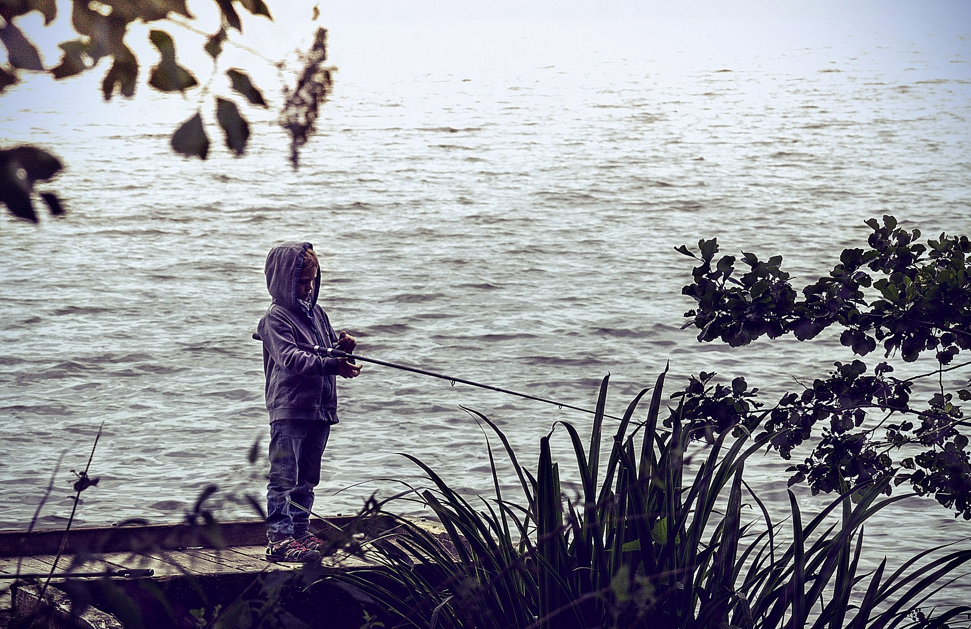 Jugendförderung Fishlife